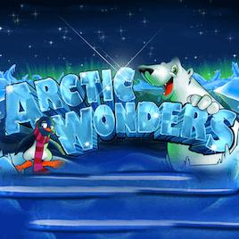 ArcticWonders