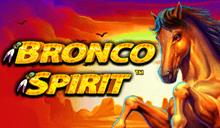 Bronco Spirit™