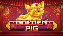 Golden Pig™